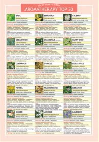 Aromatherapy Top 30